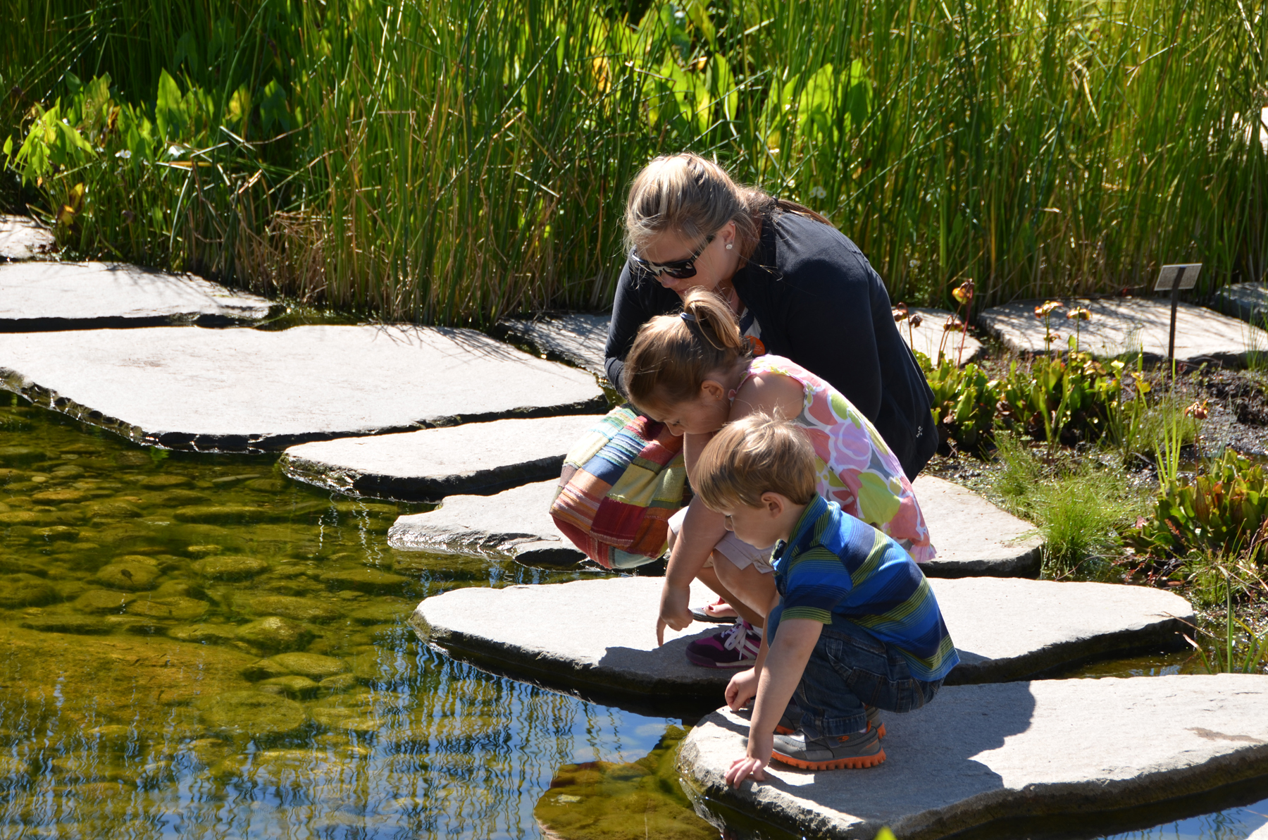 Nature Inspired Family Activities In Maine The Sunriseguide