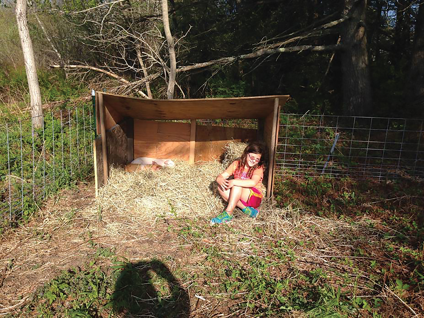 Small scale homesteading in maine the sunriseguide for Small scale homesteading