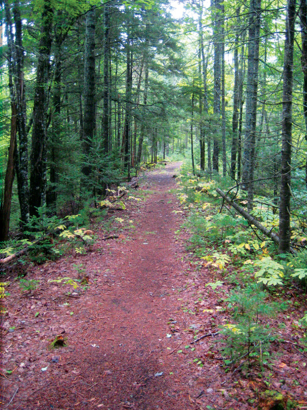 Maine land trusts miles of free hiking the sunriseguide for Free land maine