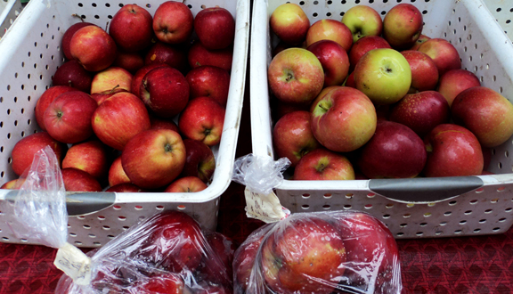 Apples_photo
