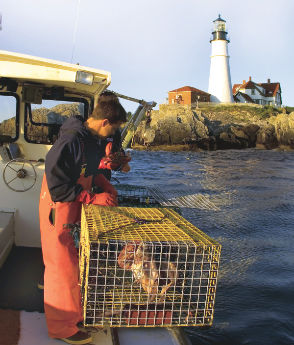 A lobsterman pulling traps in Casco Bay. PHOTO: Cynthia Farr-Winfield, Courtesy of Greater Portland Convention & Visitors Bureau