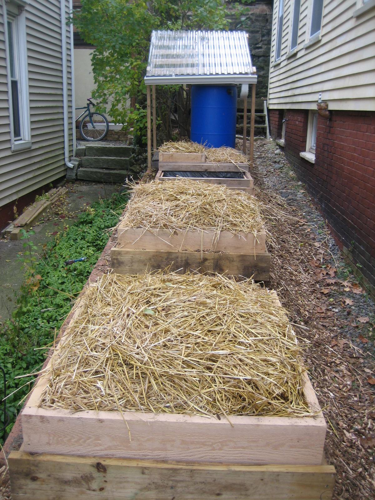 Small Scale Homesteading in Maine | The SunriseGuide