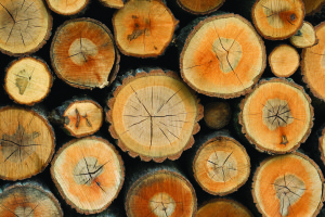 Stack of firewood - wooden abstract background.
